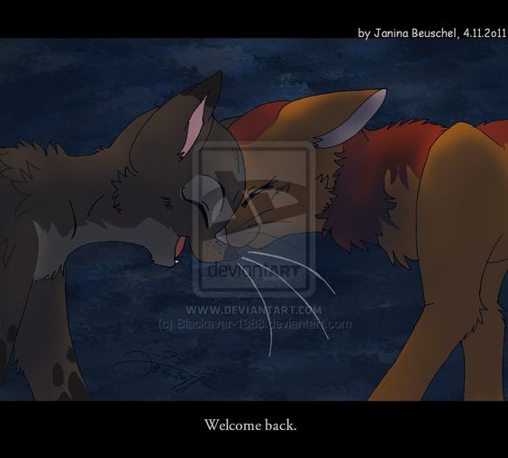 Warriors Forest Of Secrets Lexile: I'm Pretty Sure This Is Firestar Greeting Graystripe When