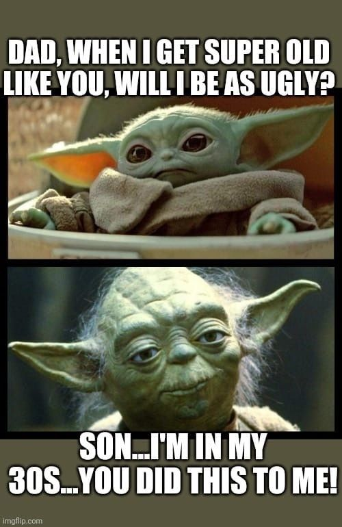 Pin By Lisa Fleming On Geek Pics For The Geek In Us All Yoda Meme Yoda Funny Jokes For Kids