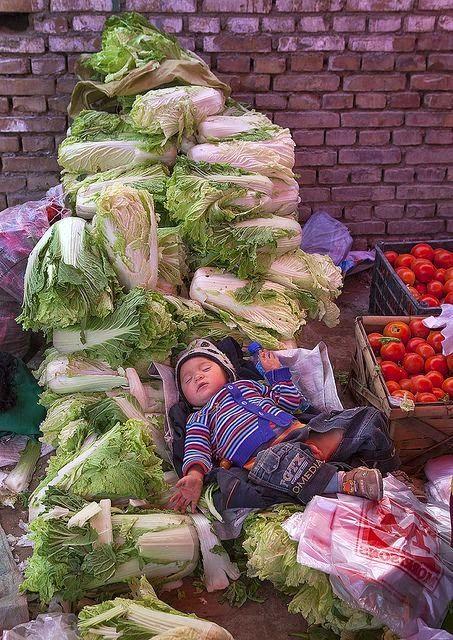 Yin en Yang in de voeding: Chinese kool In China, maar ook in andere Aziatische landen behoort Chinese kool tot de belangrijkste groenten De Chinese Geneeskunde beschouwt een goede gezondheid als een optimale balans tussen Yin en Yang. Soms kan deze balans echter verstoord zijn, er is er een teveel van het ene en een tekort van het andere aanwezig. Met de juiste voeding kun je dit evenwicht weer herstellen.