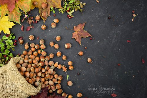 Hazelnuts with maple autumn leaves. by julia_leonova  IFTTT 500px