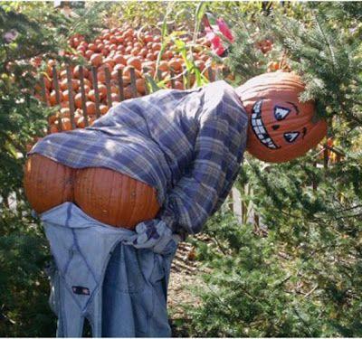 Gardens Inspired: Create a scarecrow ideas