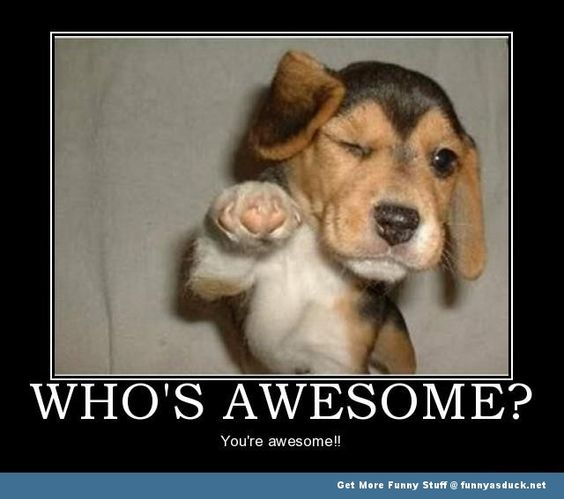 Whos Awesome? you are!!!