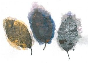 """Autumn Leaves-- """"Using the senses of touch and smell, staff gathered leaves, crumpled the leaves in their hands and held the leaves up to their noses to smell the fall season. The artists mirrored the staff behaviors. This artist placed leaves on canvas and brushed the leaves lightly with paint, changing colors with each leaf """""""