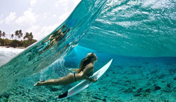 The Paradise Life for Me: Drifting Between Indo, Micronesia and ...