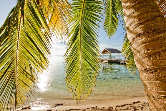 South Water Caye, Belize | South Water Caye, Belize by Tony Rath