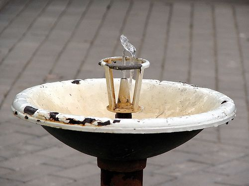 Drinking Well: Water Fountain, Hangover Patches, Public Drinking, Goto Hangover, Hangover Cure, Drinking Fountains, Toilets Fountains, Drinking Well