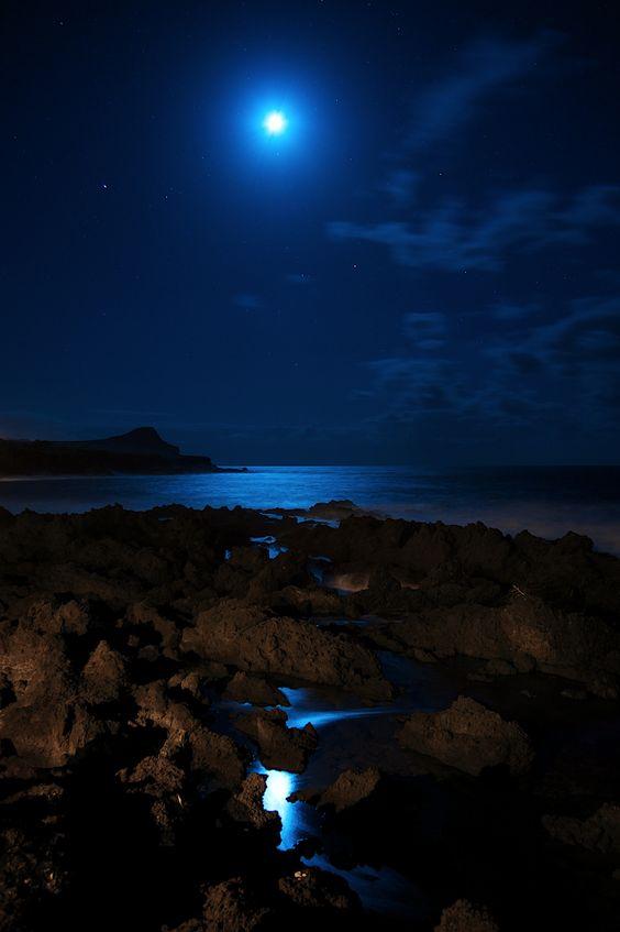 Biscoitos Azores by Rui Caria