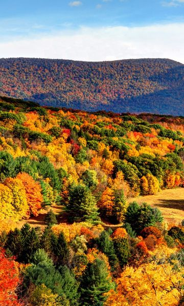 The 10 Best Fall Hiking Trails in the U.S.:
