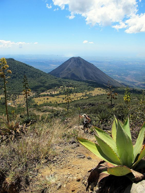 Agave and Izalco - Cerro Verde National Park, El Salvador