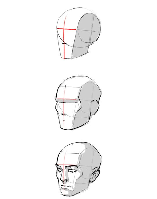 Pin By Vanesa Saux On Drawing Heads And Expressions Anatomy Sketches Anatomy Art Anatomy Drawing