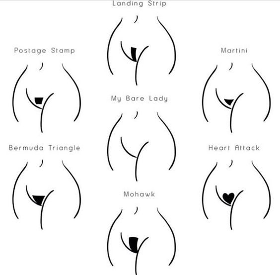 Pubic Hairstyles Down There  Not Bad  Pinterest