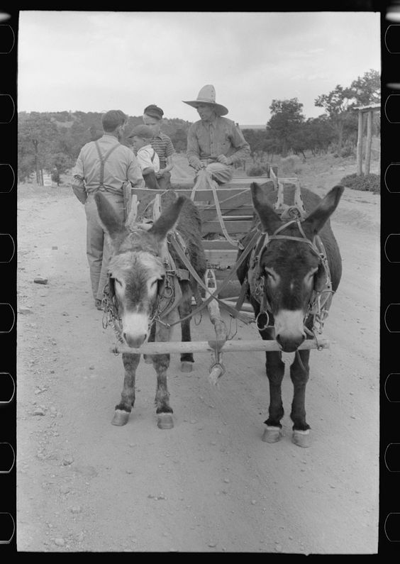 Caption (Original Description): Mr. Leatherman and his children and his burro-drawn cart. The man talking to Mr. Leatherman is a tie cutting contractor and wants Leatherman to use his burros to drag ties down from the mountains. Leatherman refused because while he could use the cash he wanted to terrace his farmland. Pie Town, New Mexico. Photographer: Russell Lee. Created: June 1940. Location: Pie Town, Catron, New Mexico. Courtesy: Library of Congress, Prints & Photographs Division…