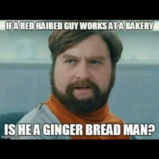 Zach Galifianakis Funny Meme : Zach galifianakis lol meme funny pinterest