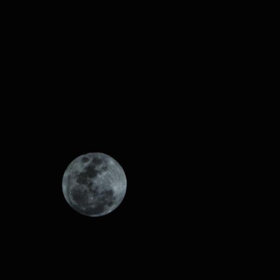 On instagram by kolonoskopia #astrophotography #contratahotel (o) http://ift.tt/1KA0Icm #moon #luna #astronomy  Un día después de la luna llena