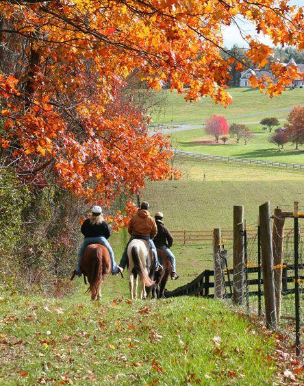 Autumn Trail Ride!