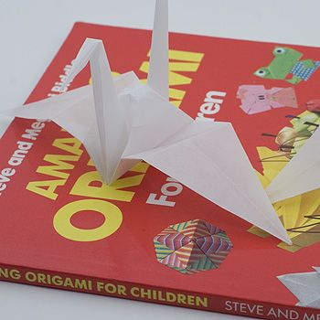recommended origami book for beginners