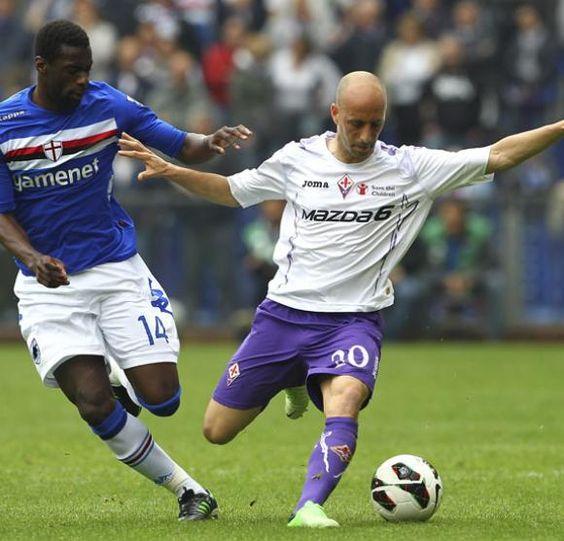 Borja Valero, Fiorentina