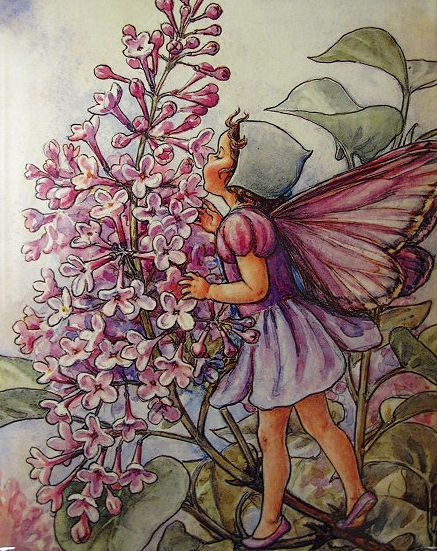 Cicely Mary Barker - Lilac Fairy