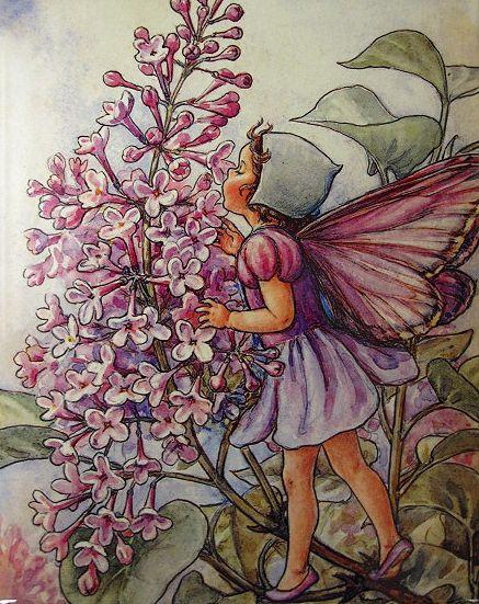 Cicely Mary Barker - Lilac Fairy