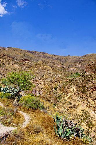 Andalousie Nijar 22 les collines au dessus de la ville