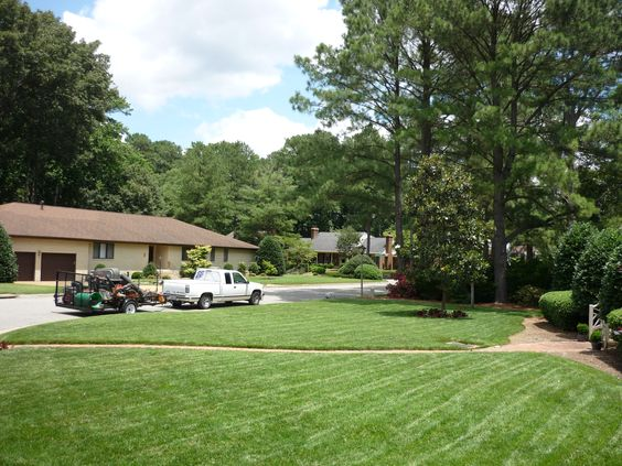A healthy lawn will keep the area around your home cooler while adding oxygen to the air.