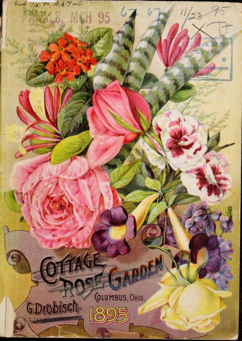 Illustrated Front Cover Of Cottage Rose Garden 1895