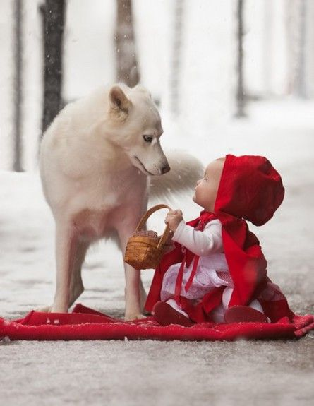 <3 the true red riding hood? She gets along so well with the wolf :D