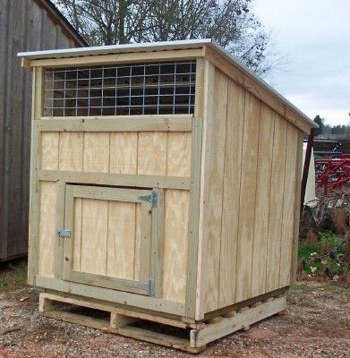 Duck house geese pinterest a chicken house and duck for Duck and goose houses