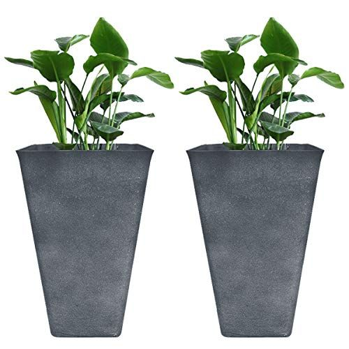 Tall Planters 26 Large Flower Pots Pack 2 Indoor And Ou Https Www Amazon Com Dp B07hb1p6rj Ref Cm Sw R Pi Dp Large Flower Pots Tall Planters Flower Pots