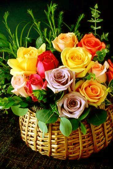 Imagenes+De+Flores+Para+Felicitar+Por+Whatsapp