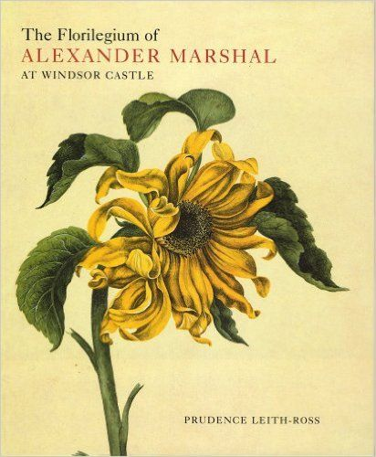 The Florilegium of Alexander Marshal at Windsor Castle (Natural History Drawings at Windsor Castle S): Prudence Leith-Ross: 9781902163055: Amazon.com: Books