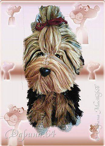 Игрушка Мастер-класс Вязание крючком Собака йорк Пряжа фото 1