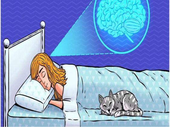 المخ يأكل نفسه إليك أضرار قلة النوم على المدى الطويل بتوقيت بيروت اخبار لبنان و العالم