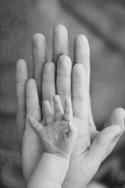Foto de la manita de un bebé comparada con la de sus padres adultos This shows a childs hand to an adults hand. www.madreyblogger.com:
