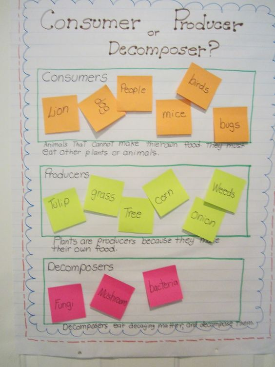 If you teach organisms and habitats don't miss this post! It's filled with game and activity links, videos, plus two anchor charts!
