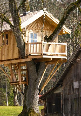 Treehouse Construction And Luxury On Pinterest