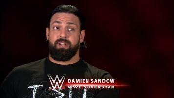 Damien Sandow and The Miz reveal what matches they are most looking forward to reliving on WWE Network.