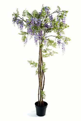 arbre plante glycine violet en pot tronc en bois fleurs artificielles luxe 200cm inspiration. Black Bedroom Furniture Sets. Home Design Ideas