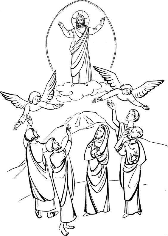Ascension of jesus-biblekid.eu
