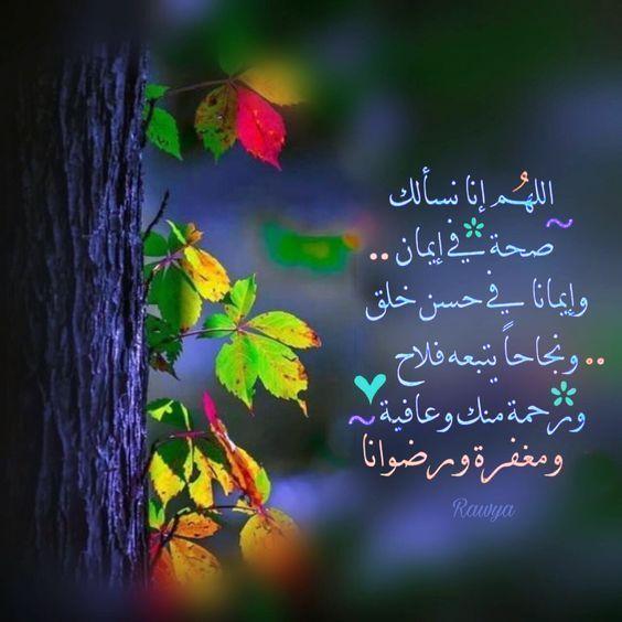 خلفيات أدعية يوم عرفة 2019 1440 افضل ادعيه عن يوم عرفه فوتوجرافر Sweet Quotes Beautiful Prayers Islamic Images
