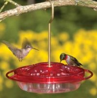 Hummingbird Food Recipe    Use 1 part sugar to 4 parts water mixture. (example: 1cup white sugar + 4 cups water)  1. Boil the water. Measure after.    2. Add the sugar while hot and stir until all the granules are dissolved.    3. Allow mixture to cool to room temperature before filling clean feeders.    4. Refrigerate any leftover solution.       Boiling will kill any bacteria or mold spores which may be present. It will also reduce any chlorine or fluorine that is in the water…