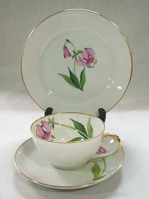 VINTAGE ROSENTHAL PORCELAIN TEA CUP SAUCER PLATE TRIO WITH PINK DAYLILY