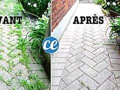 Terrasse Noircie L Astuce Miracle Pour La Nettoyer Sans Effort Mauvaises Herbes Allees Jardin Et Desherbant Maison