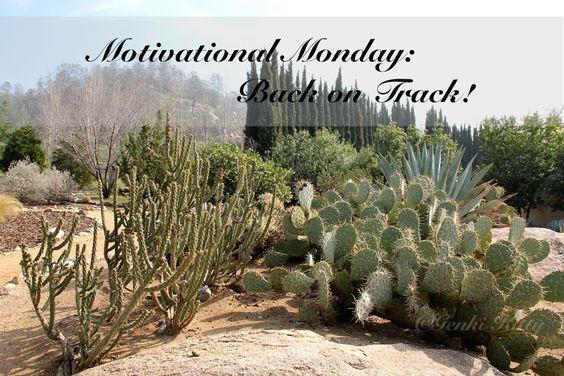 workout motivational monday