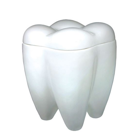 A socially responsible dentist or hygienist will fill this with tiny packs of floss. You might have other ideas; cookies and candies come to mind. White ceramic molar-shaped ceramic jar. Details: - Ab