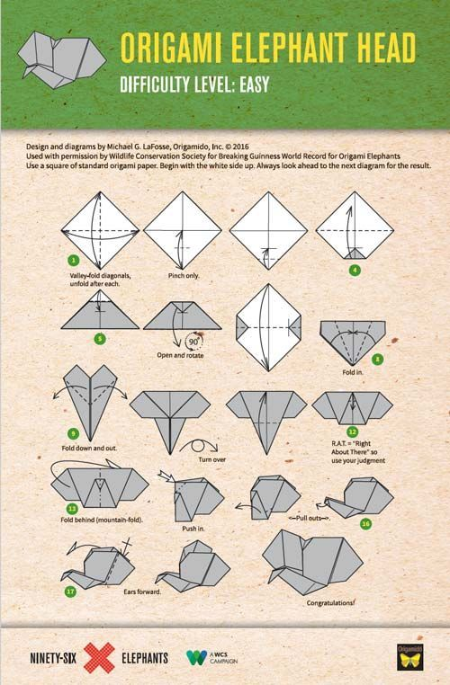 How to Make an Origami Elephant (with Pictures) - wikiHow | 762x500