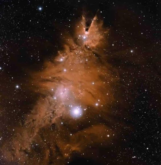 "Bright stars outline the familiar shape of the Christmas Tree Cluster in this visible-light image, which has been rotated 180°. Another famous structure, called the Cone Nebula, sits atop the tree. It's located in the constellation Monoceros. (Image: NOAO/AURA/NSF) Mona Evans ""Monoceros the Unicorn"" http://www.bellaonline.com/articles/art182324.asp"