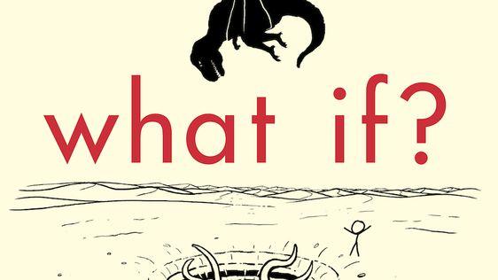 Resultado de imagen de what if?