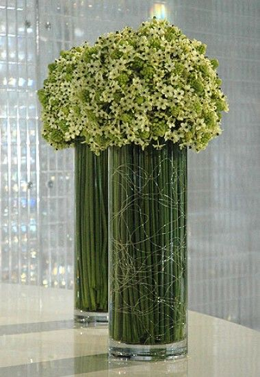 Ornithogalum & steel grass contemporary vase arrangements