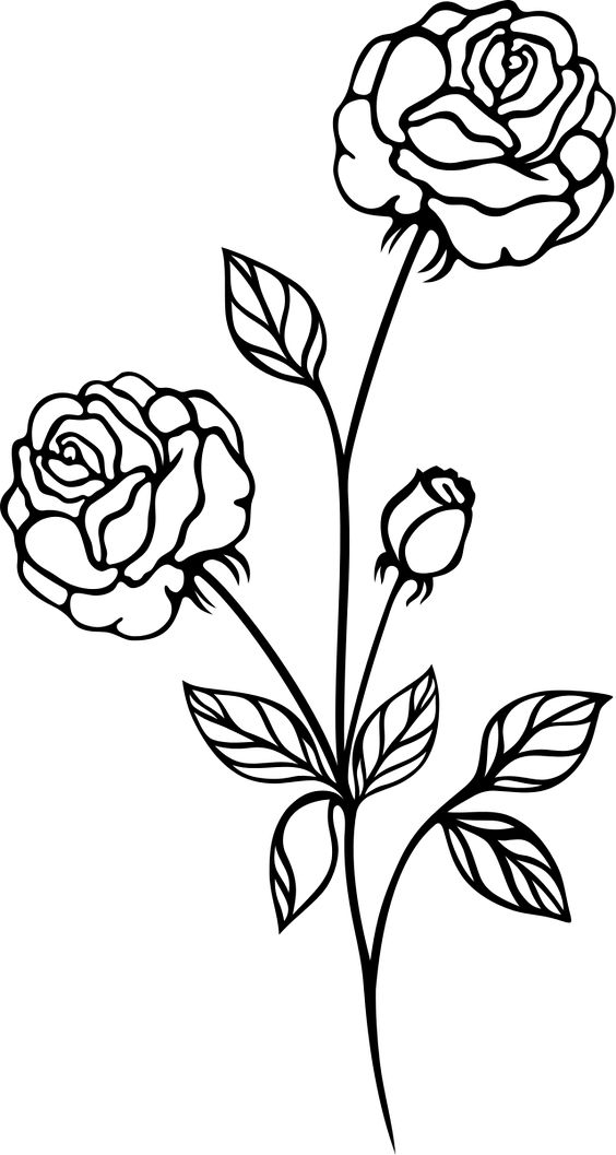 Rose Black And White Rose Flower Clip Art Flower Line Drawings Clip Art Vintage Roses Drawing